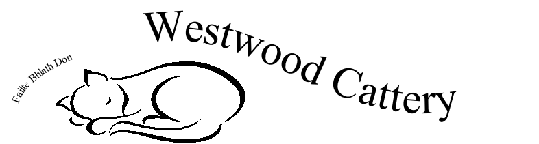 Westwood Cattery